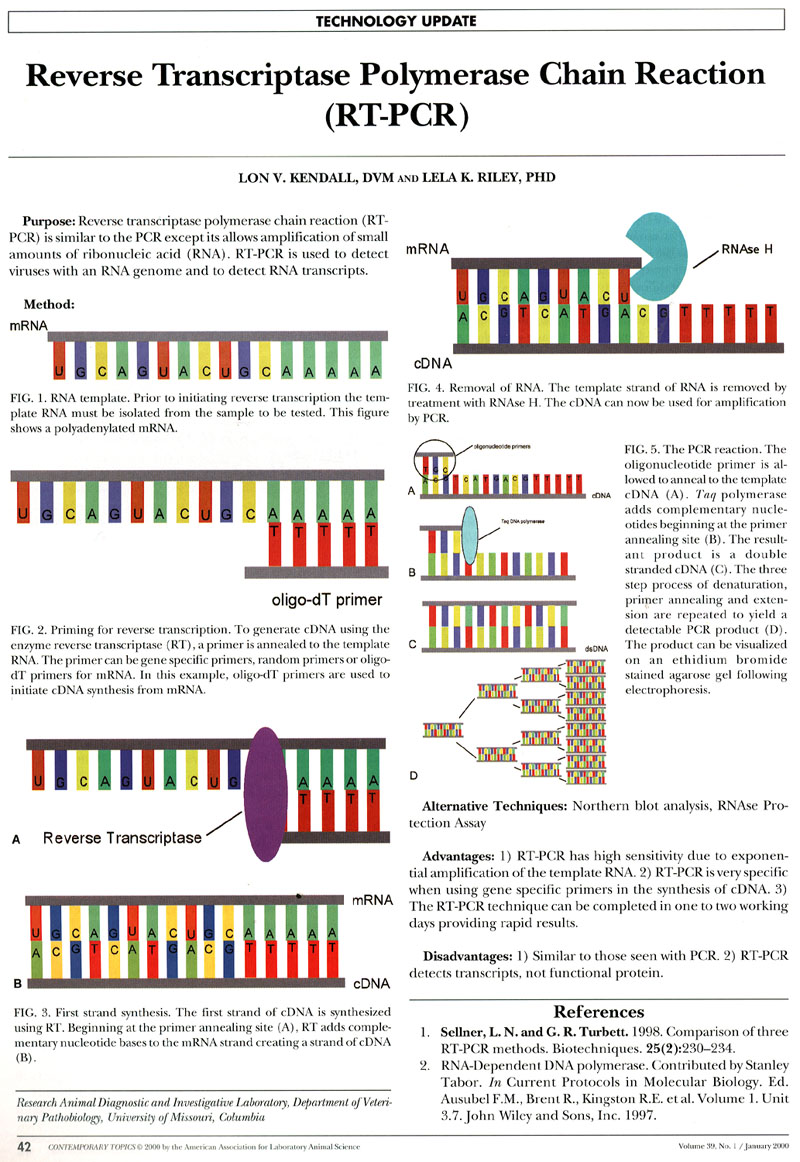 Gene Quantification & block RT-PCR